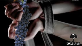 Dracaena Wines, 50 shades